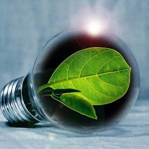 Riscalda casa con le migliori offerte green luce e riduci le tue emissioni di CO2